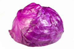 Cabbage 3. An isolated purple cabbage Stock Photo