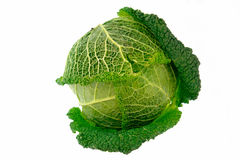 Cabbage-4 Royalty Free Stock Photography