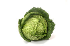 Cabbage. Whole Cabbage isolated against white stock photo