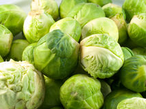Cabbage. A pile of small green brussels cabbages Royalty Free Stock Photos
