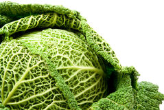 Cabbage. Green cabbage isolated on white background royalty free stock images
