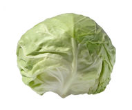 Cabbage. On a white background Stock Photography