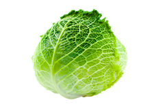 Cabbage. Isolated on a white background Royalty Free Stock Photography