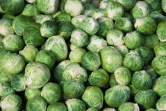 Cabbage. Is often added to soups or stews.  soup is popular in central Europe and eastern Europe, and  is an ingredient in some kinds of borscht. Garbure (from stock photo