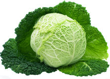 Cabbage. Isolated on a white background Stock Photography