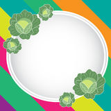 Cabbage background Royalty Free Stock Photography