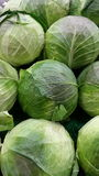 Cabbage background Royalty Free Stock Photos