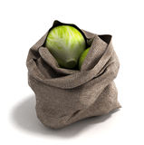 Cabbage bag 3d render on white backgrownd Stock Photos