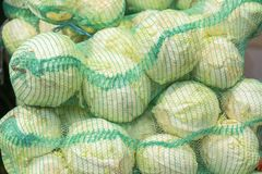 Cabbage in bags. A lot of cabbage, cabbage still life, lie in a bag royalty free stock photography