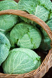 Cabbage in a basket stock photography