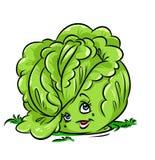 Cabbage beauty character cartoon illustration Royalty Free Stock Photography