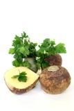Cabbage beet Royalty Free Stock Photos