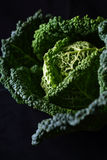 Cabbage on black Stock Photography