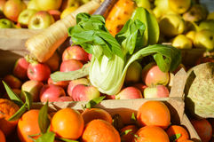 Cabbage Bok Choy among fruit and vegetables at farmers market Stock Photos