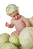 Cabbage boy Stock Photos