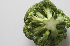 Cabbage broccoli. Head of cabbage broccoli - fresh vegetable Stock Photography