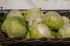 Cabbage. In the brown basket on sunny day Royalty Free Stock Photos