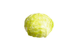 Cabbage. Brussels sprouts were placed out on a white background Royalty Free Stock Image