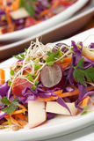Cabbage, Carrot, And Apple Salad Royalty Free Stock Photos