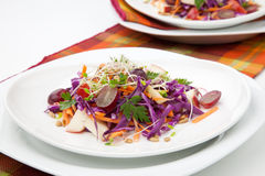 Cabbage, Carrot, And Apple Salad Royalty Free Stock Photography