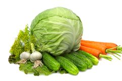 Cabbage,carrot,garlic,cucumbers,dill,lettuce. Royalty Free Stock Images