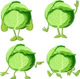 Cabbage cartoon with  legs and hand gesture - vector Stock Photo