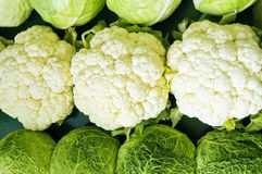 Cabbage and cauliflower. Aligned at store Stock Images