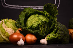 Cabbage, cauliflower , broccoli potatoes, onions, garlic and hand drawn sign  ferme market Stock Images