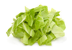 Cabbage chopped slice Stock Photography