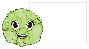 Cabbage and clean banner Royalty Free Stock Photo