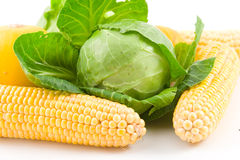 Cabbage and corns Royalty Free Stock Photography
