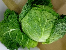 Cabbage with curly leaves stock photography
