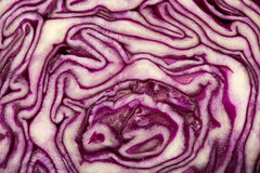 Cabbage cut Stock Photography