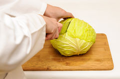 Cabbage cut Royalty Free Stock Image