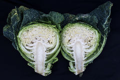 A cabbage cut in half Royalty Free Stock Images