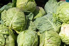 Cabbage on display Royalty Free Stock Photography