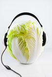 Cabbage DJ. A  big cabbage with headphones Royalty Free Stock Photo