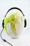 Cabbage DJ