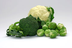 Cabbage Family. Setting with cauliflower, broccoli and brussel sprouts Stock Image