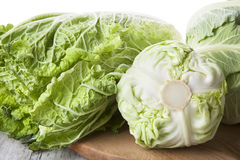Cabbage family. Stock Image
