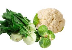The cabbage family, kohlrabi,brussel sprouts, cauliflower Royalty Free Stock Photography