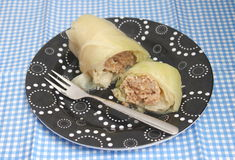 Cabbage filled with meat Stock Photography