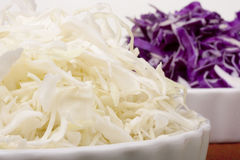 Cabbage finely Stock Image