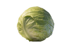 Cabbage. Fresh cabbage isolated on a white background Stock Photography