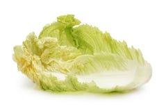 Cabbage fresh leaf Royalty Free Stock Photo