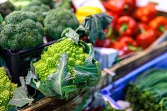 Cabbage green leaf in bunches, winter vegetable, on sale at local famer`s market, typical of Tuscany stock photos
