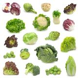 Cabbage and green vegetable collection. Isolated on white background