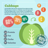 Cabbage infographics and vitamins in a flat style. Vector illustration. EPS 10 Stock Photos