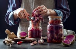 Cabbage kimchi in glass jar. Woman preparing purple cabbage and watermelon radish kimchi. Fermented and vegetarian probiotic food