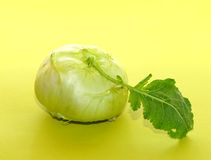 Cabbage kohlrabi. Loaf of cabbage colerape with green leaf Stock Photography